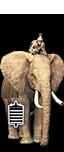 Elephantes Hulaioi Liboukoi (Romanized)
