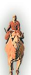 Farasin Bedawi