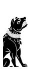Mercenary Molossian Dogs