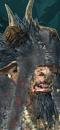 Bray-Shaman (Wild) (Razorgor Chariot)