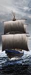 Пиратский корабль - Ополчение (древковое оружие)