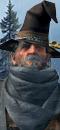 Hechicero Gris (Caballo de Guerra con barda)