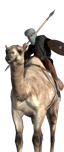 Mercenary Camel Warriors