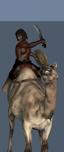Afar Camel Riders