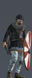Elite Nordic Warriors