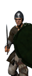 Celtic Warlord
