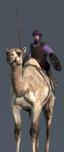 Tuareg Camel Spearmen