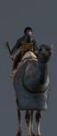 Клибанарии на верблюдах