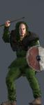 Nordic Brigands