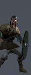 Germanic Warband