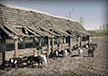 Venedi Goat Barns