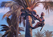 Palm Tapper