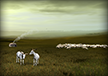 Gardiens de chèvres