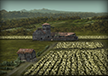 Wheat Farm