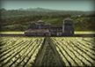 Wheat Mills