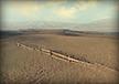 Obilná pole