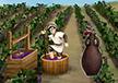 Grape Press
