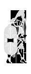 Cohors Praetoria