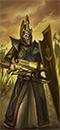 Darkshards (Shields)